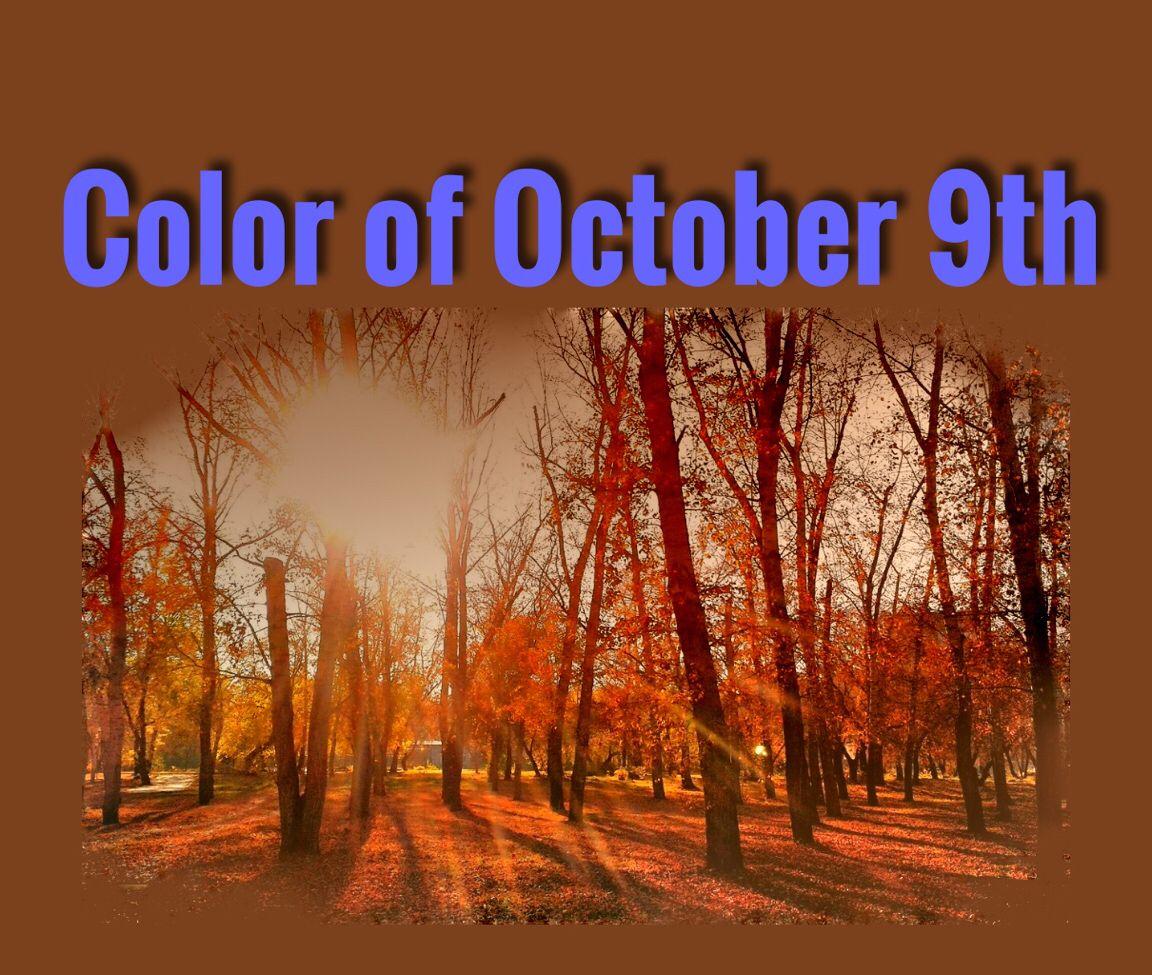 10月9日の誕生色 https://www.facebook.com/hoshiuranai #天然石 #占星術 #ホロスコープ