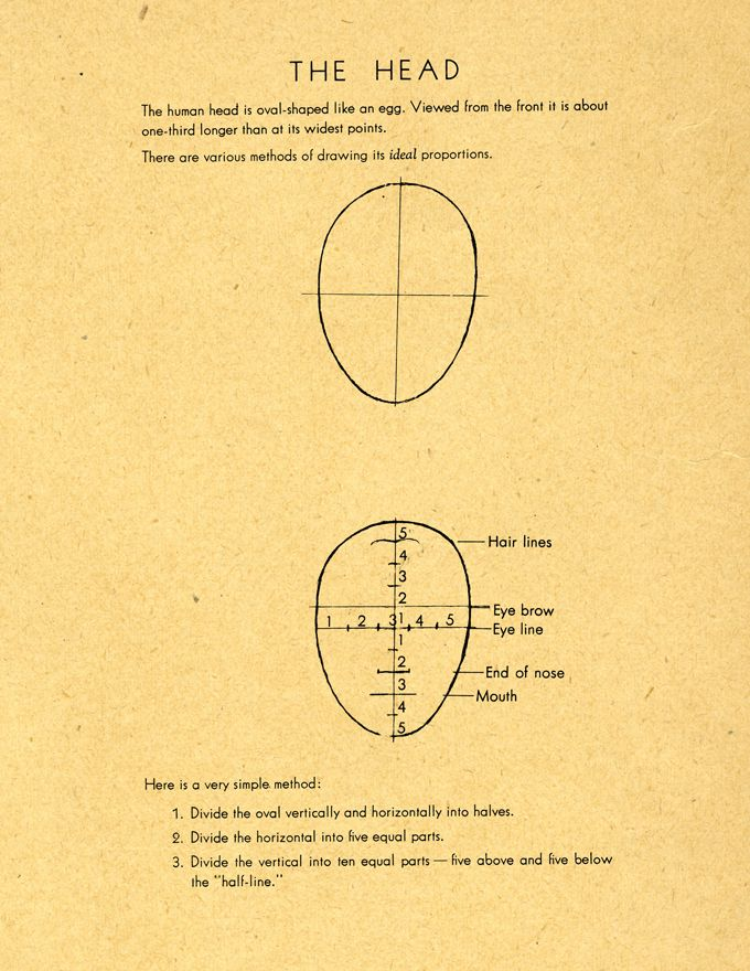 Here are more Willy Pogany's beautifully drawn studies of Head structure and facial details. Enjoy. {  click images to view larger  }   Pos...