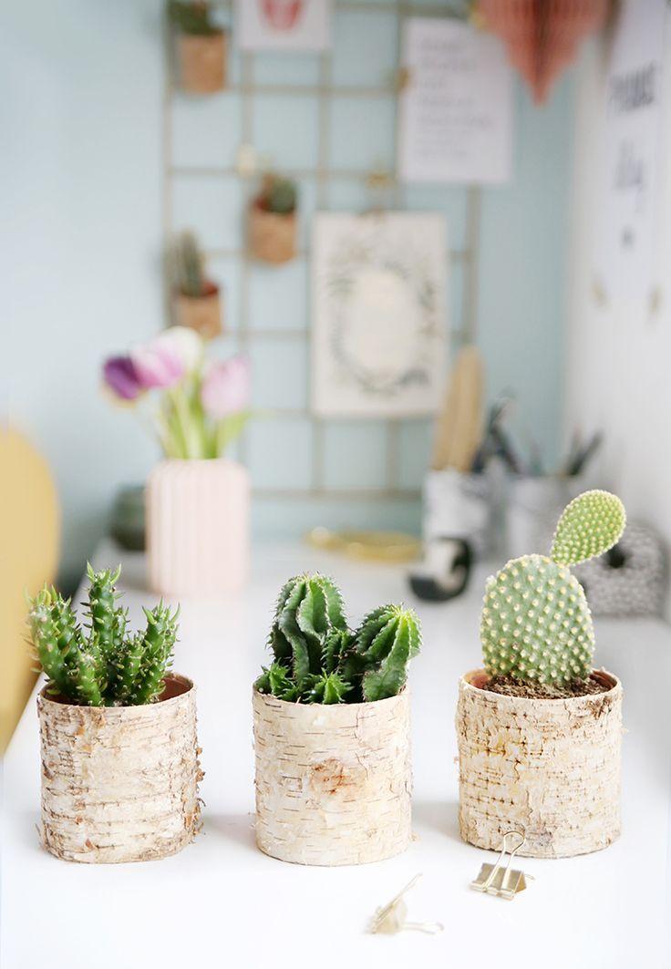 diychallenge: pflanzen&holz} pflanztöpfe mit birkenrinde, Gartengerate ideen