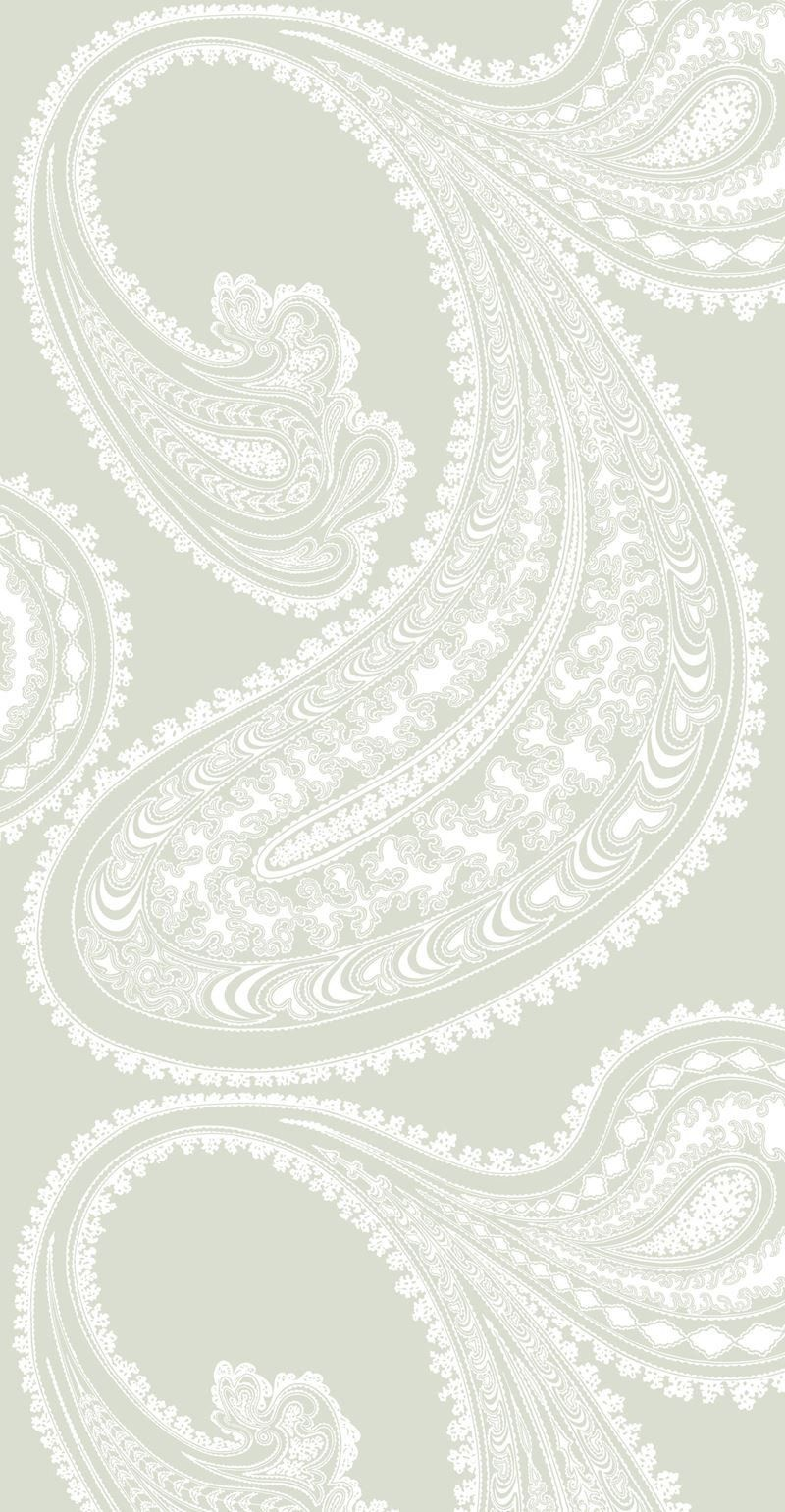 Cole Son Wallpaper 95 2063 Cs Rajapur White Olive Paisley