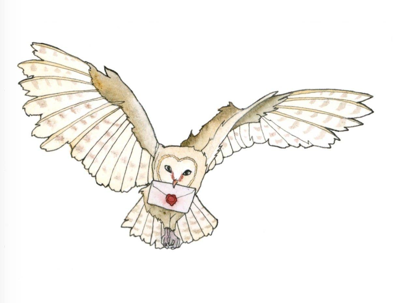 Pin Von Erin Wieglenda Cronbaugh Auf Harry Potter Cakes Harry Potter Clip Art Fanart Harry Potter Eule Zeichnung