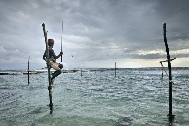 Stilt Fishing in Sri Lanka.