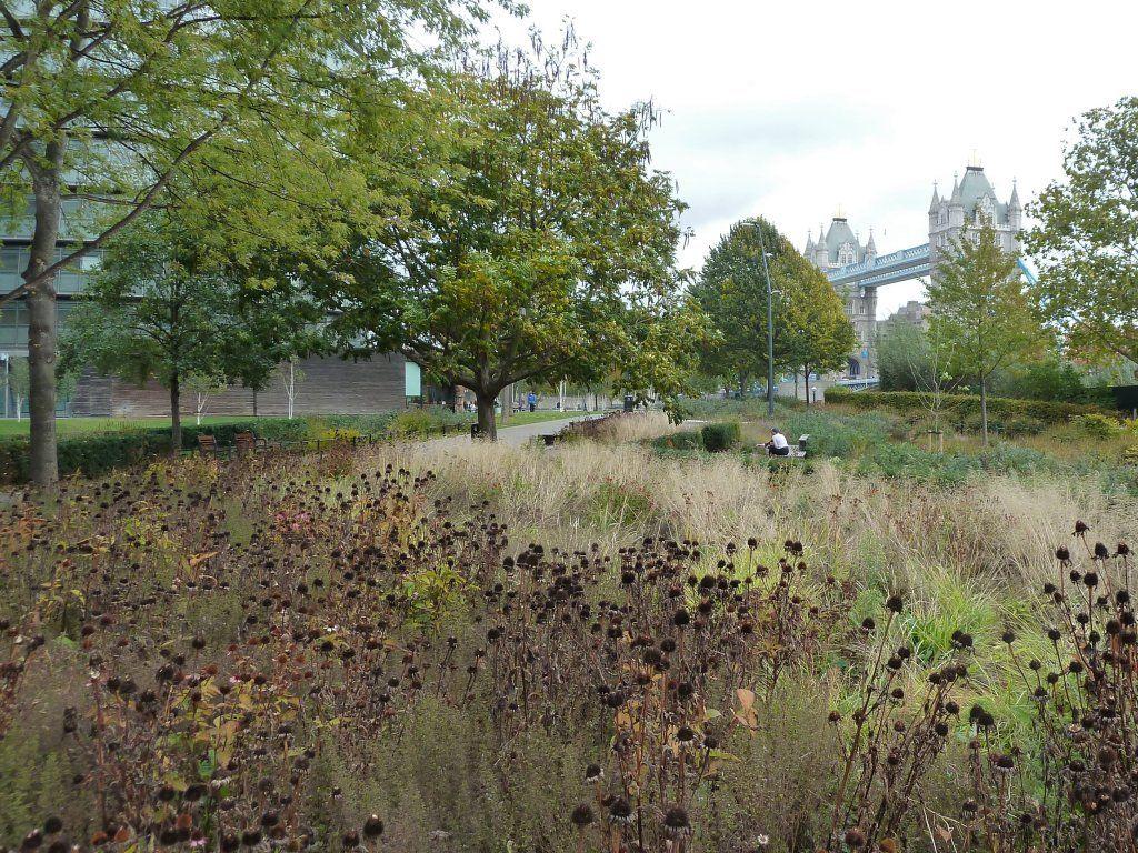 Piet oudolf gardens public gardens pottersfield for Piet oudolf landscape architect
