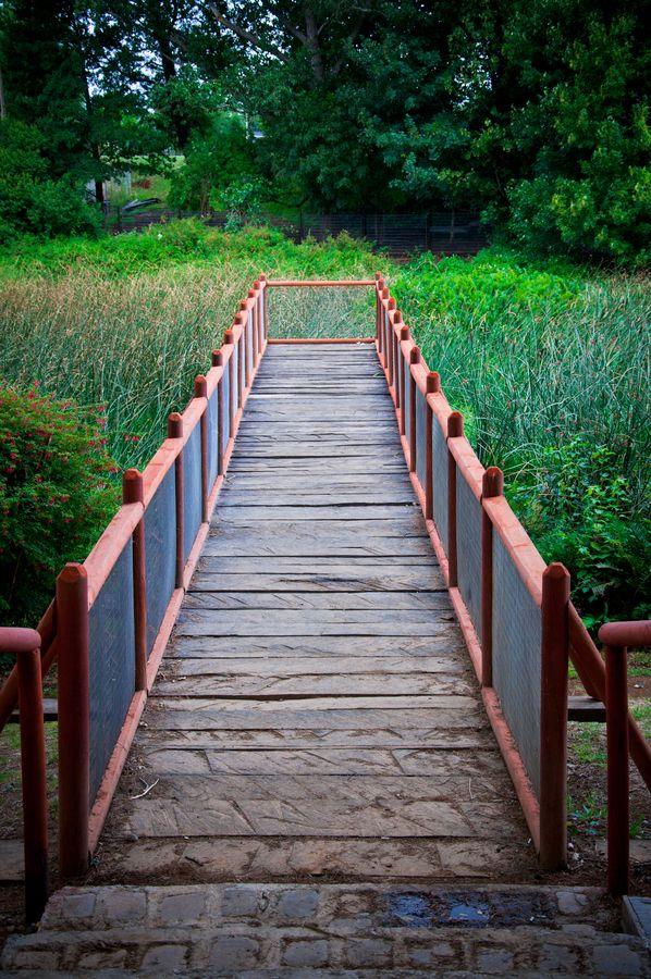 Bridge by Andrés Vial Cifuentes, via 500px