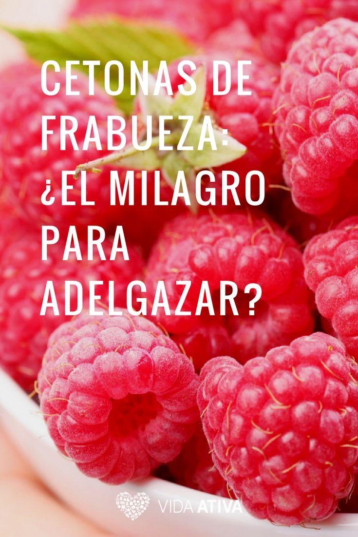Frambuesa Para Adelgazar Hierbas Naturales Para Bajar De Peso En Chile