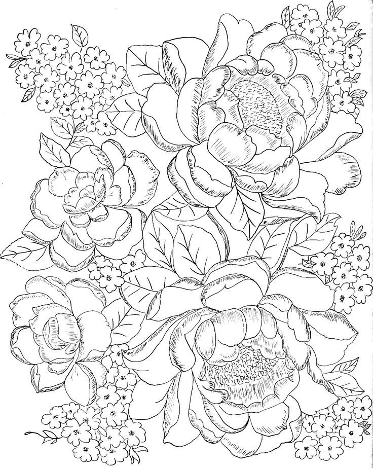 mexican flowers coloring pages - photo#15