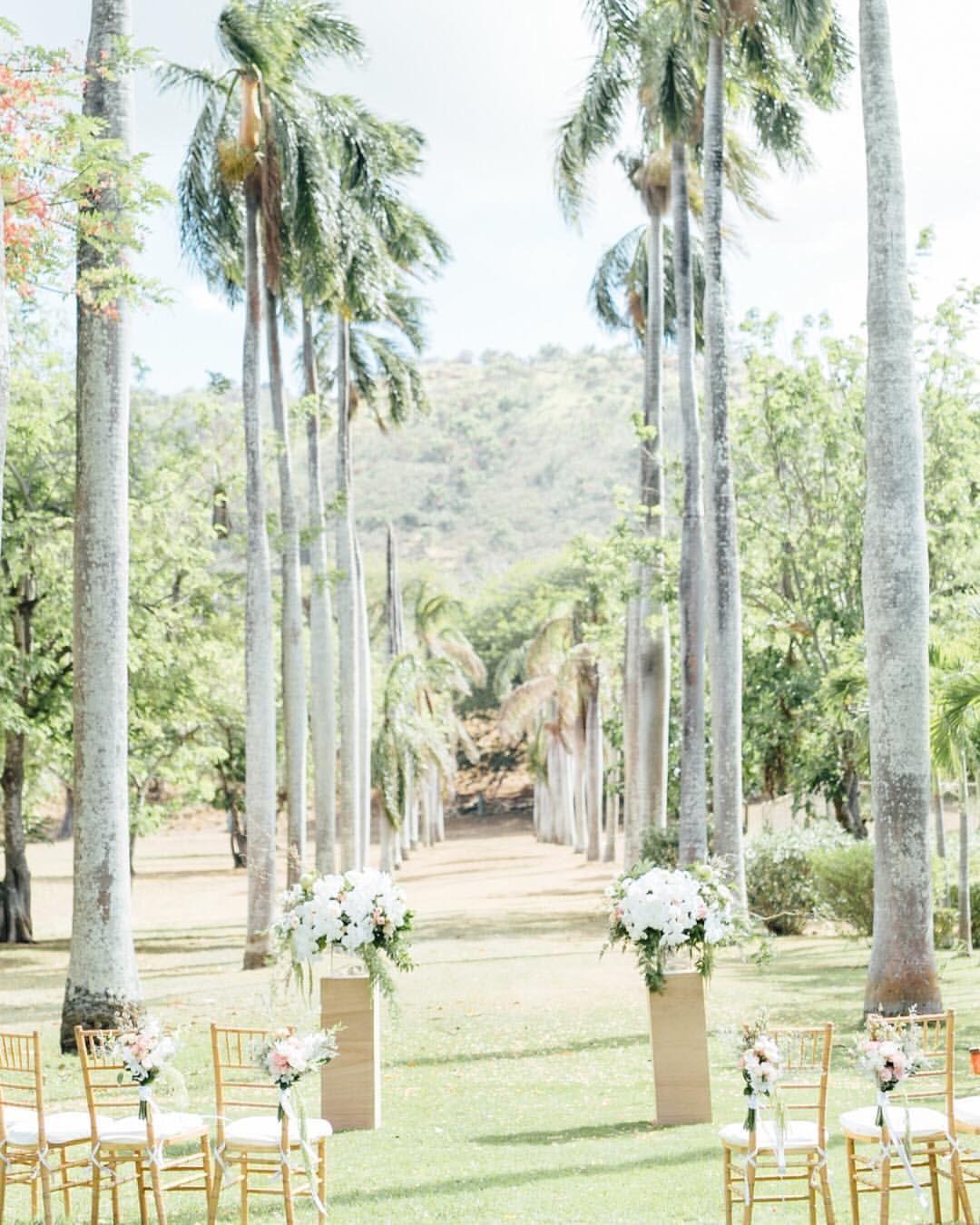 Waikiki Beach Wedding Ceremony: This Dreamy Modern Boho Ceremony Took Place Under An Aisle