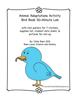 animal adaptations activity bird beak lab animal adaptations activities and students. Black Bedroom Furniture Sets. Home Design Ideas