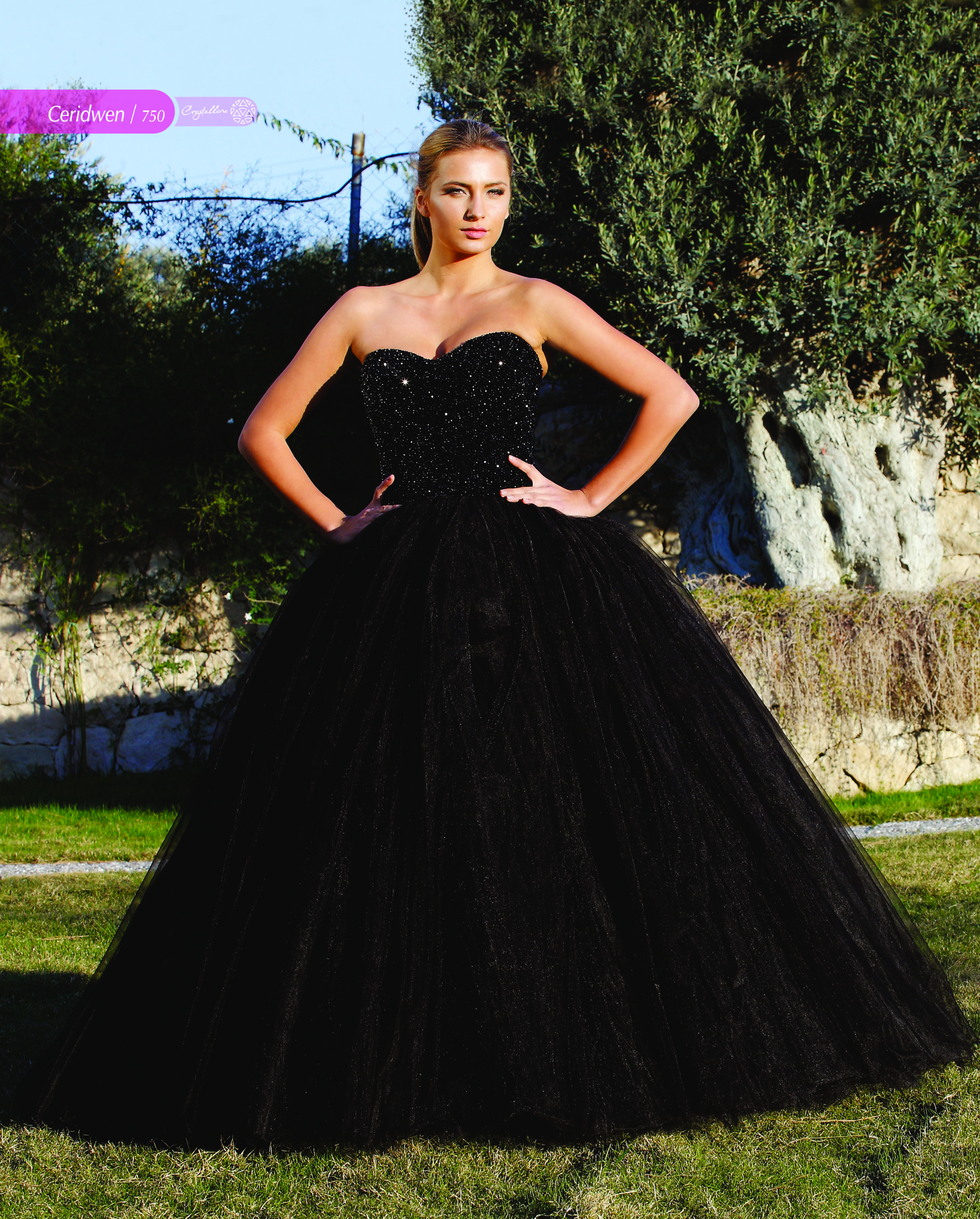 Black Ball Gown Wedding Dress Called Ceridwen By Crystalline Bridals Full Tulle Skirt And An Full Bead Black Ball Gown Ball Gown Wedding Dress Wedding Dresses