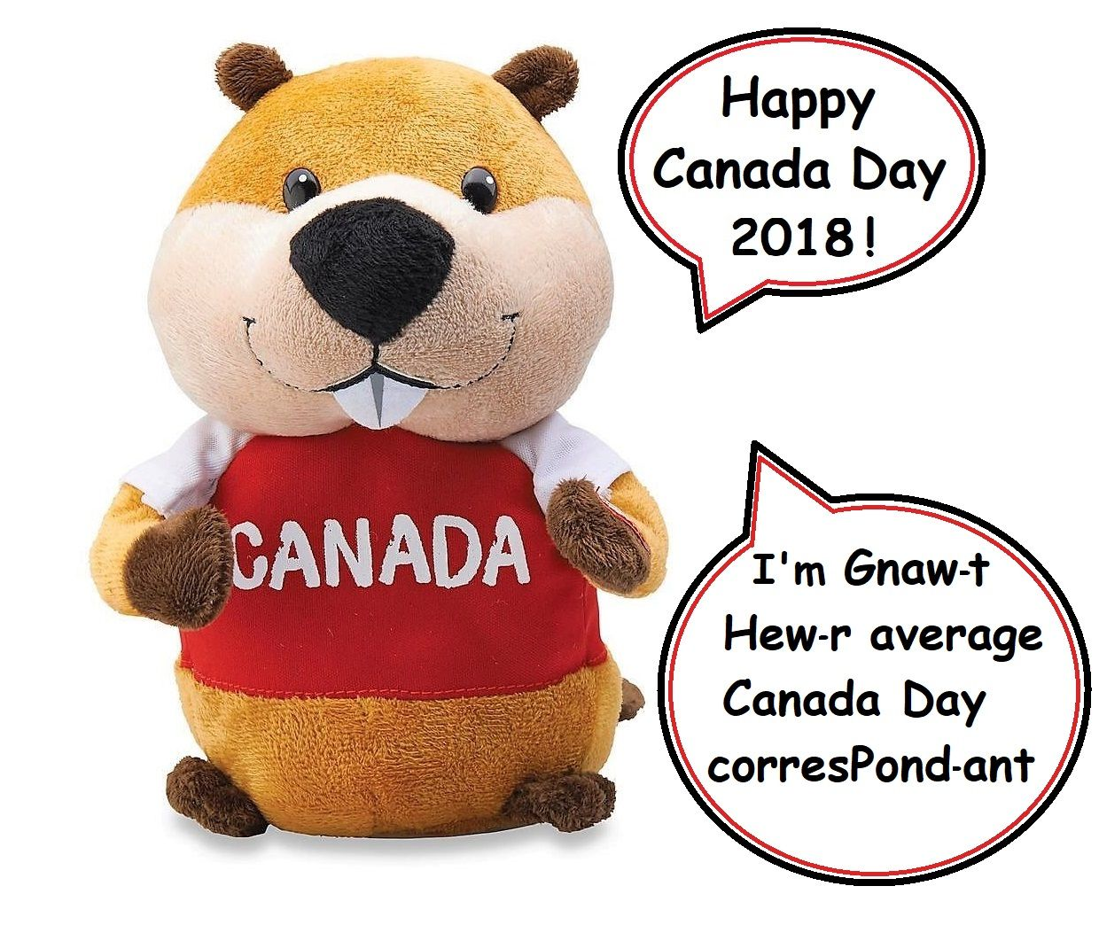 Cute Talking Beaver From Canadian Retail Chain Giant Tiger Awesome Deals Since 1961 Beaver Teddy Bear Teddy [ 1044 x 1240 Pixel ]