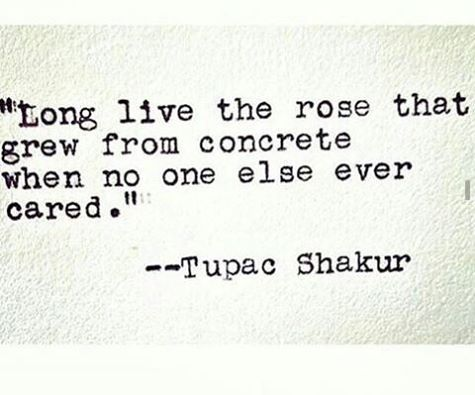 """the rose that grew from concrete when no one else ever cared"" -Tupac Shakur"