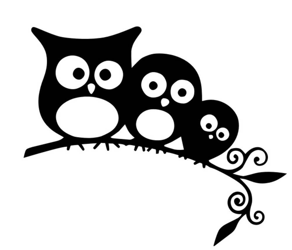 Прикольные черно белые картинки животные для