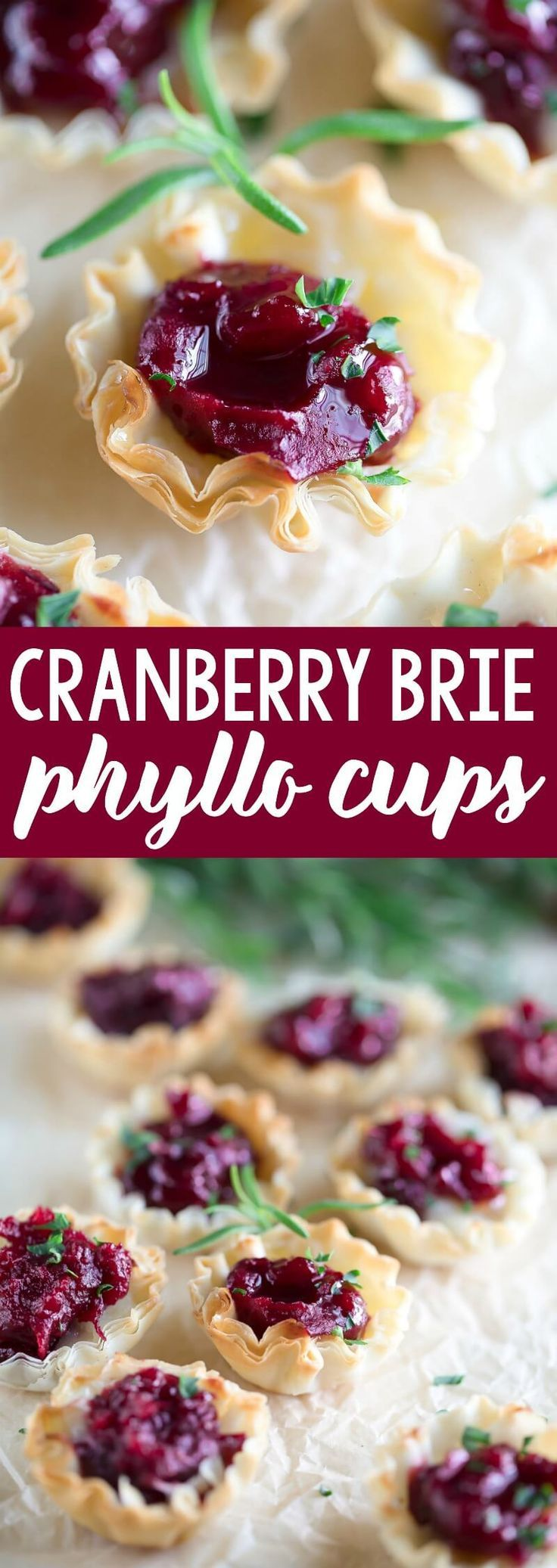Cranberry Brie Phyllo Cups - An Easy Appetizer Recipe! Cranberry Brie Phyllo Cups are always a hit!