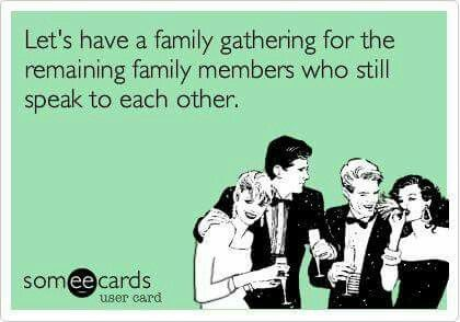 Let S Have A Family Gathering For The Remaining Family Members Who Still Speak To Eachother Funny Quotes Ecards Funny Friendship Humor