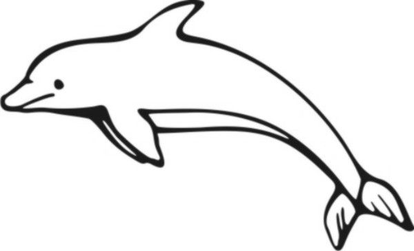 - Dolphin Images For Coloring - Cinebrique
