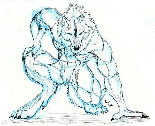 Pin de Bence Gmes en Vrfarkasok  Pinterest  Hombres lobo