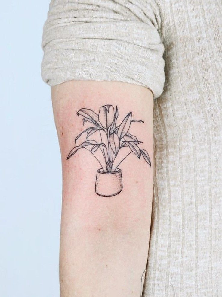 Zaya Hastra House Plant Tattoo Plant Tattoo Tattoos Aesthetic Tattoo