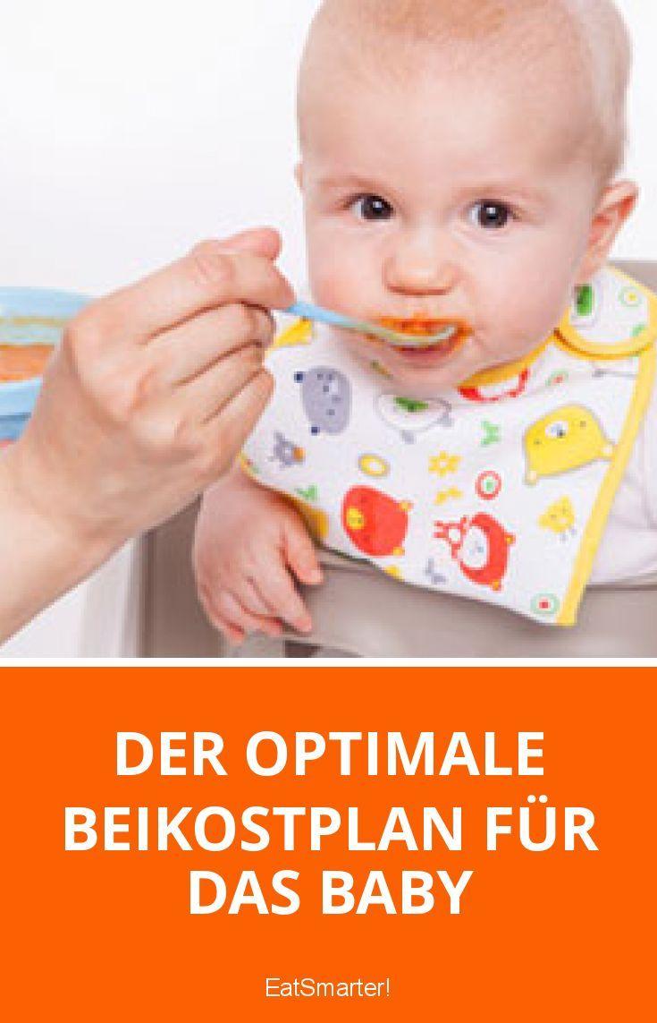 der optimale beikostplan f r das baby little food. Black Bedroom Furniture Sets. Home Design Ideas