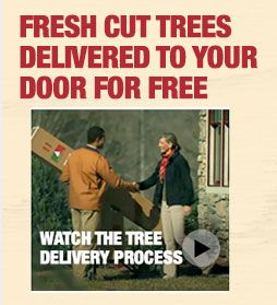 home depot will deliver fresh cut christmas trees to your door