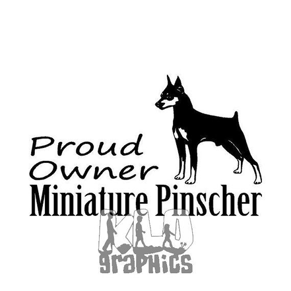 Proud Owner Miniature Pinscher Terrier Vinyl Decal By