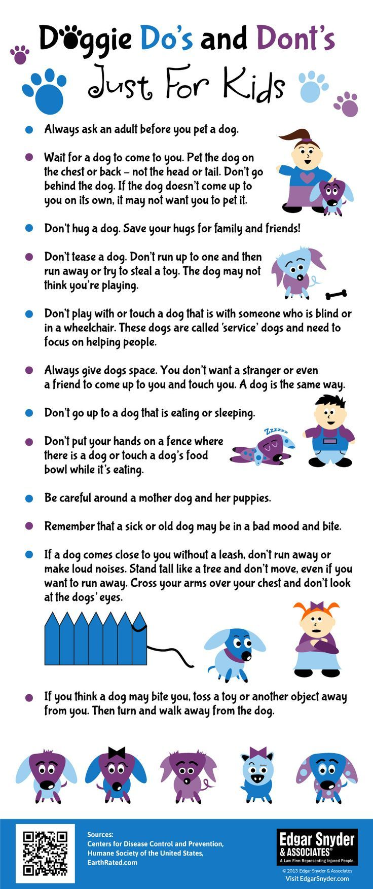 12 Things Every Child Must Know About Dogs Dog safety