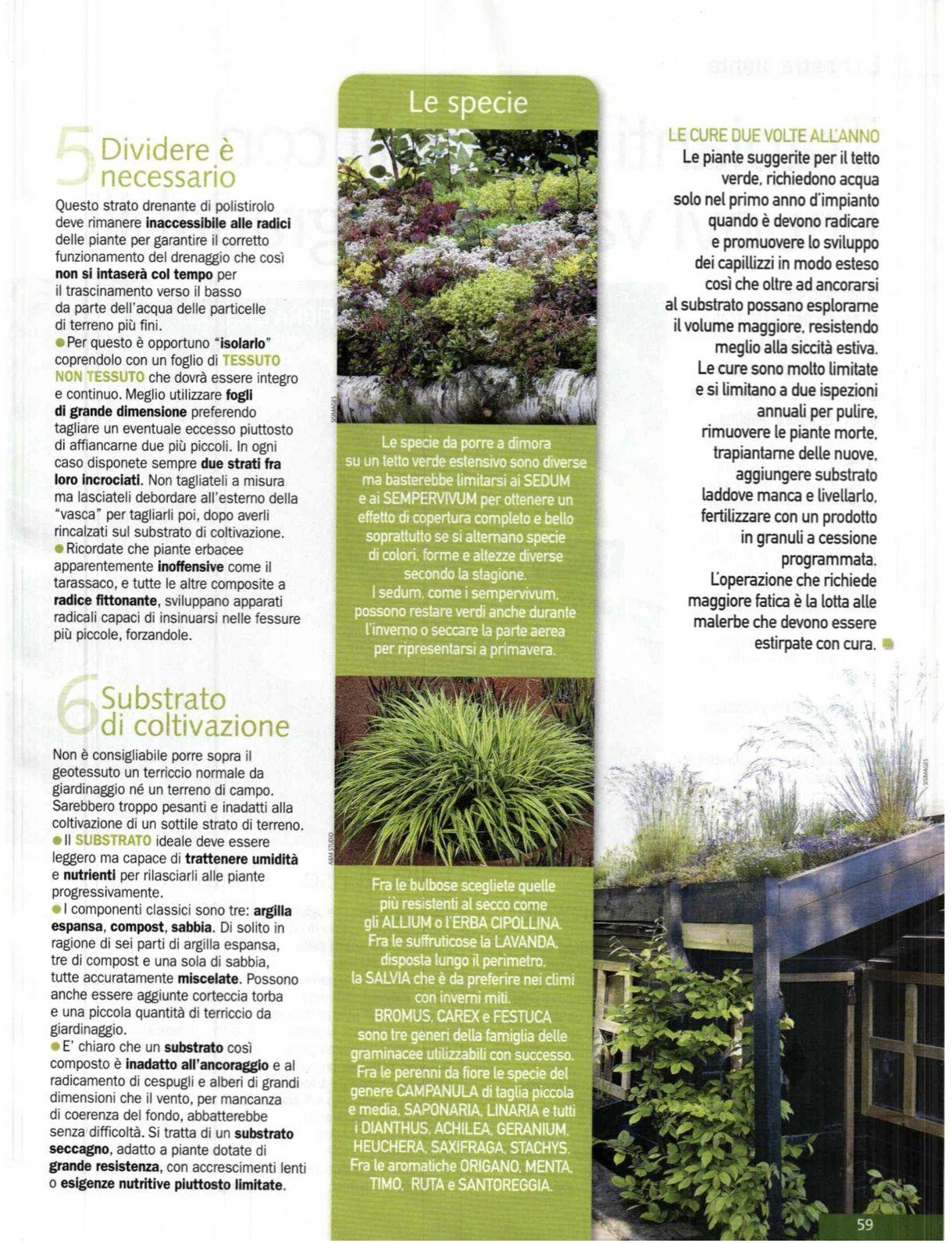 pagina3 tetto verde