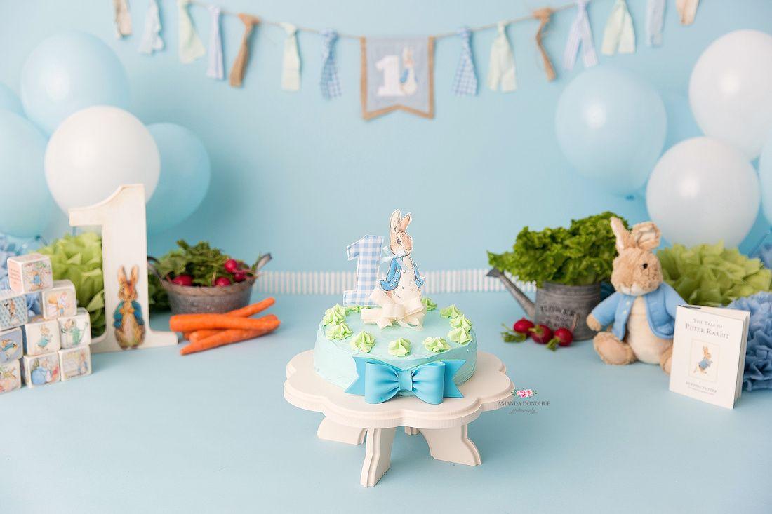 Cake Smash Session Setup Peter Rabbit Birthday Peter Rabbit Cake Rabbit Cake