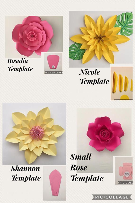 Pdf Ava Template Flower Template Paper Flowers Paper Crafts