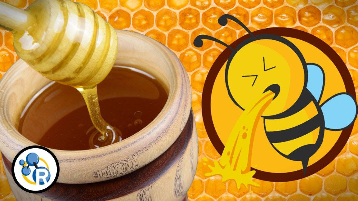 The Chemistry of Honey Reveals That It\'s Really Just Bee Puke