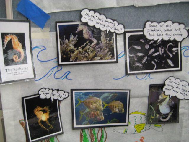 essay on global warming buy an essay essay on global warming