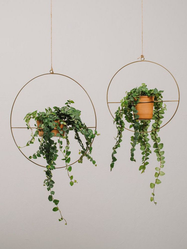 May 2018 Horoscope For Spring  Zodiac Flowers And Plants is part of Hanging plants indoor, Plants, Plant decor, Plant design, Handmade planter, Hanging plants - The warmer weather has us all thinking about plants   and where to put them  Inside or out  Well, it might just depend on your zodiac sign  Here, we run through how your May horoscope will decidedly affect your plant life this month