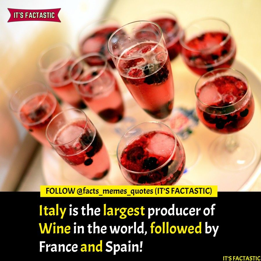 Wine Fact Italy The Largest Producer Of Wine Wine Facts Wine Tags Wine Lovers