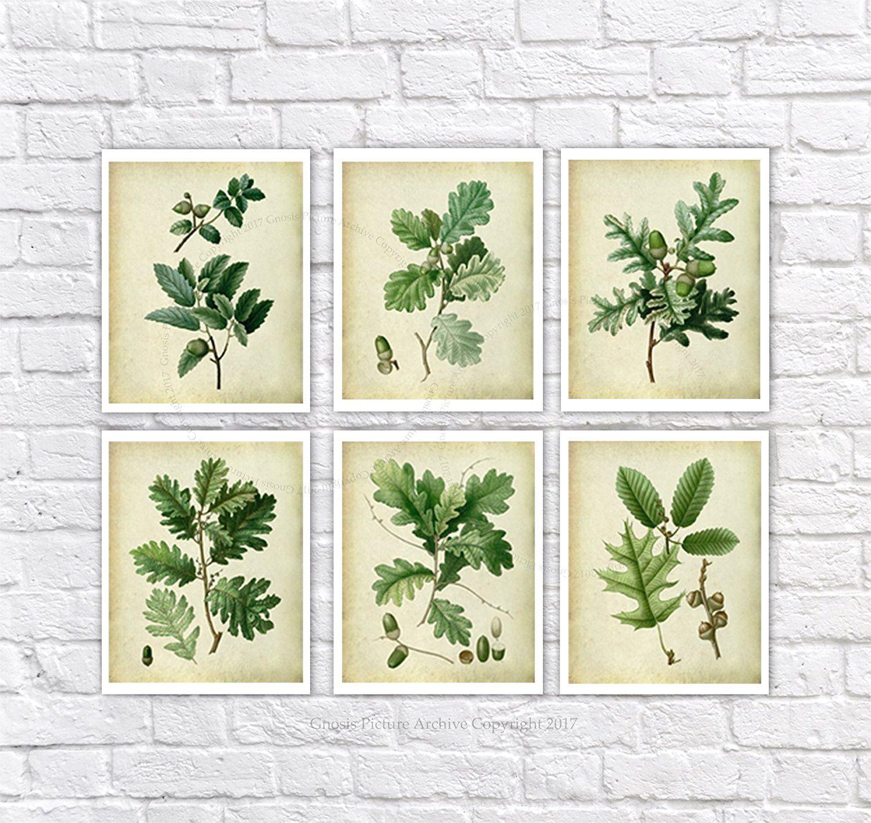 Farmhouse decor set of 6 unframed oak leaf art