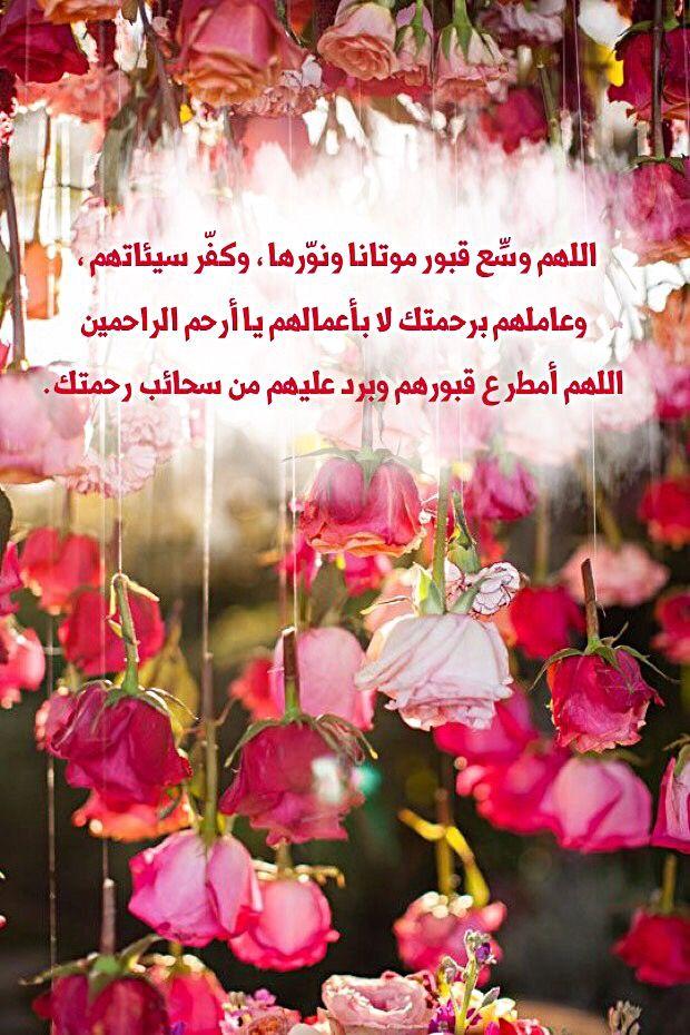 خالتي الحبيبة ربنا يصبرنا على فراقك و يجعل مثواك الجنة و جمعنا بك على خير في جنه الفردوس الأعلى يا حبيبت قلبي Aunt Love Quran Verses Some Quotes Islam Quran