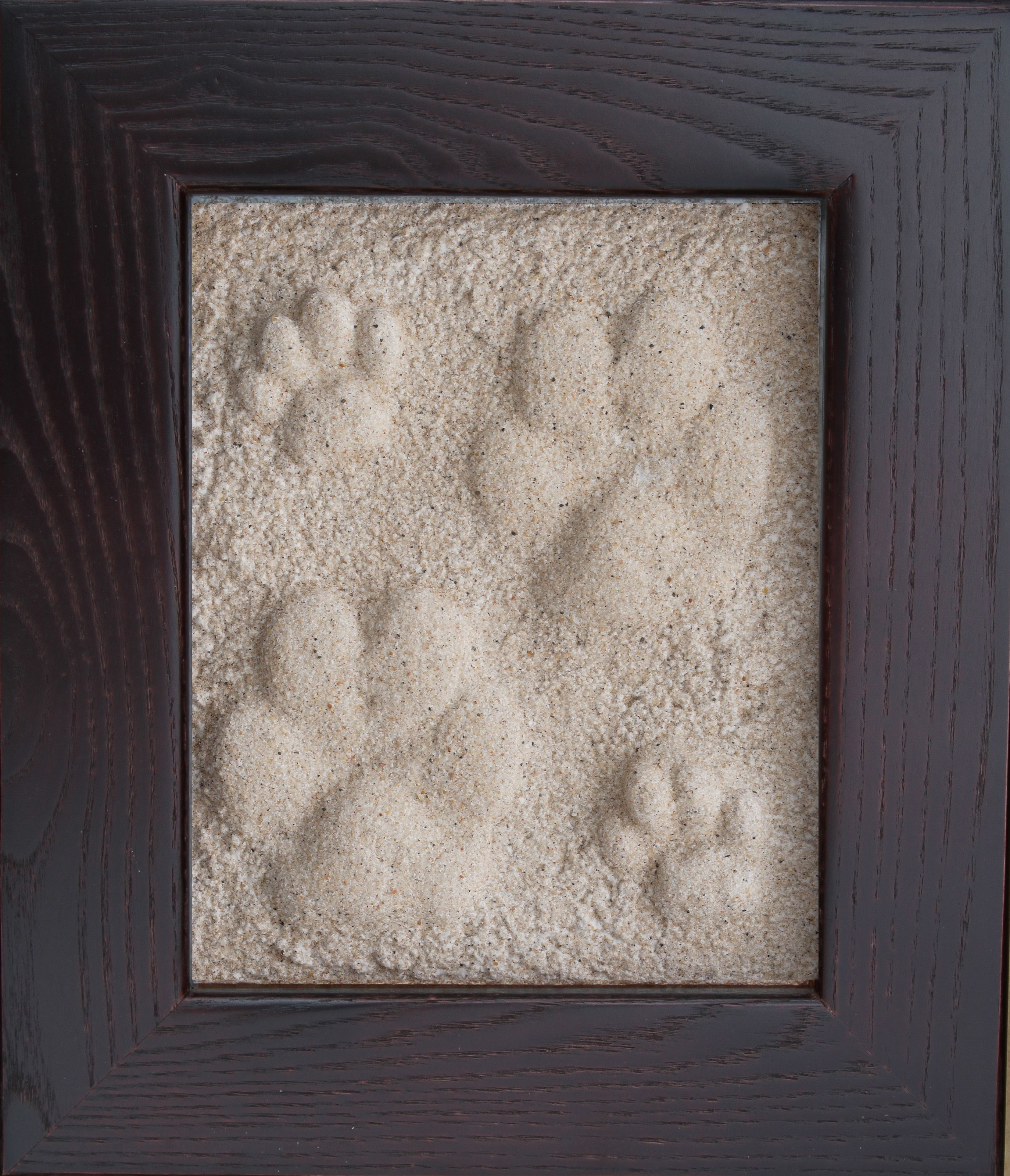 how to make a paw print of your dog