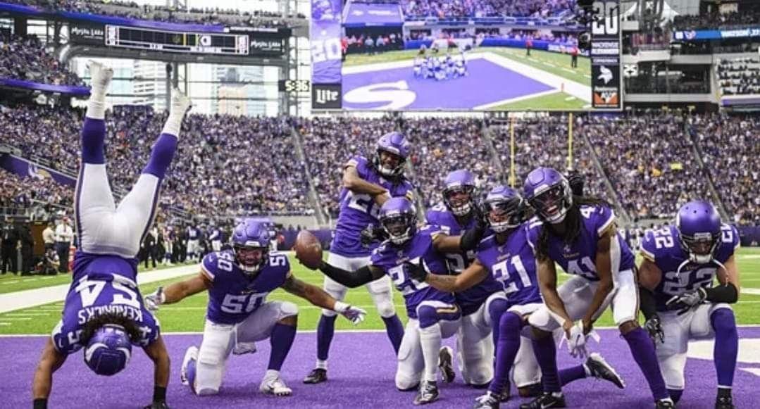 Pin by Bob Singer on Minnesota Vikings in 2020 Sports