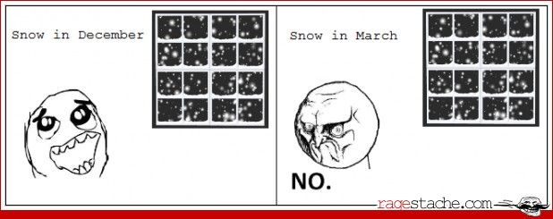 Reactions to Snow