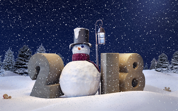 Download wallpapers Happy New Year 2018, winter, snowman