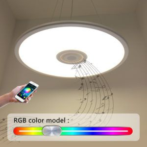 Remote Controlled Ceiling Light Fixture