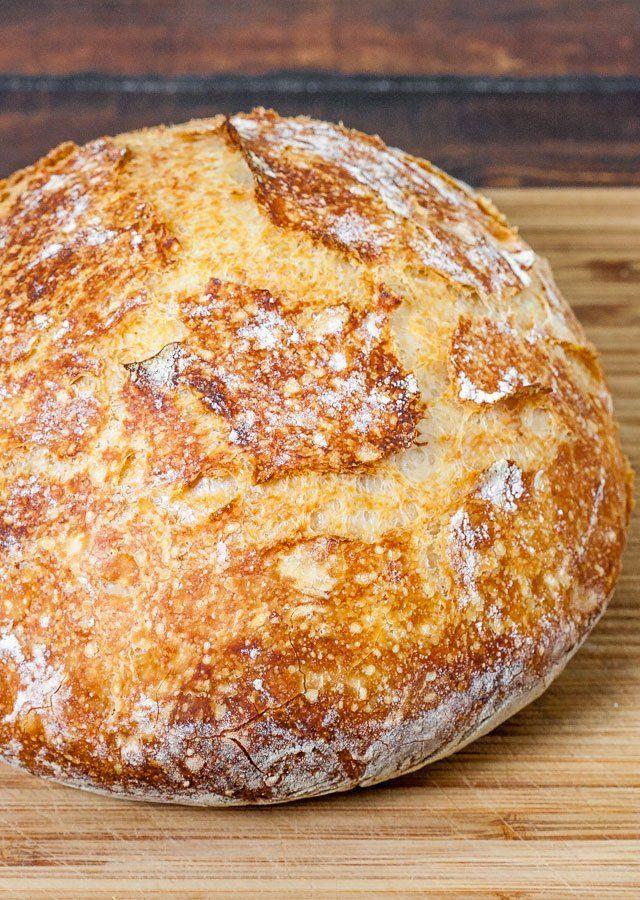 No Knead Dutch Oven Crusty Bread   Recipe   Bread recipes ...