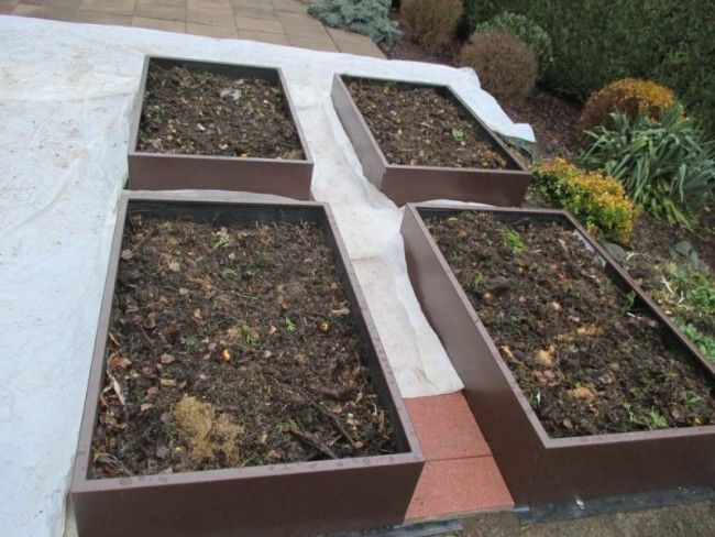 remplissage en couche lasagne pour remplir potager en carre sur lev bio jardin la. Black Bedroom Furniture Sets. Home Design Ideas