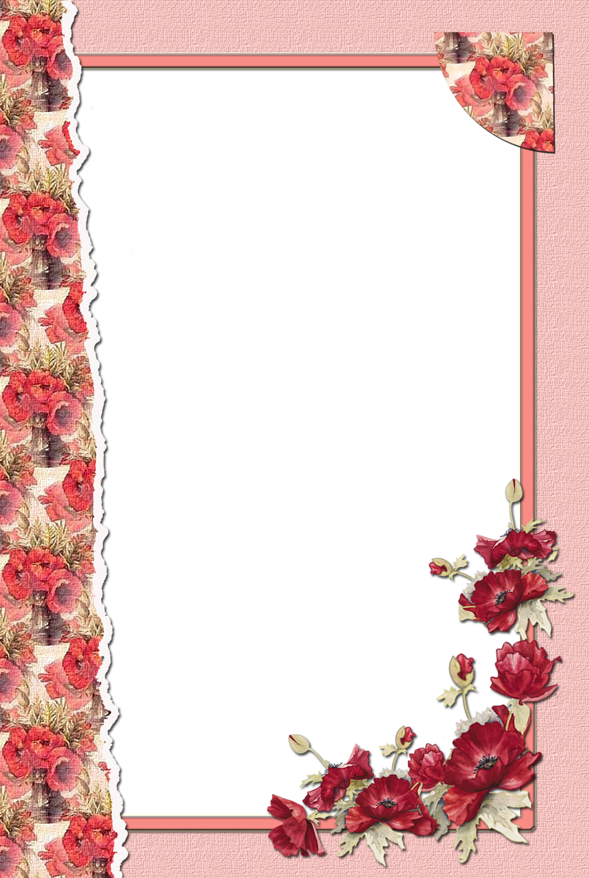 Transparent Flower Red Frame Frames And Borders Transparent