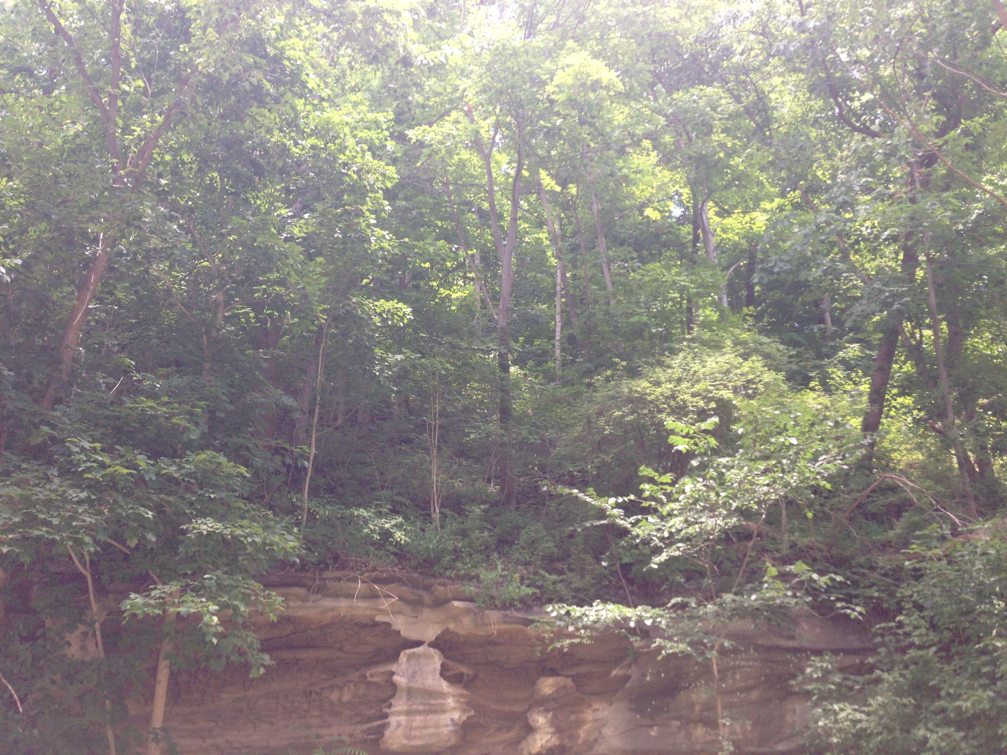 An interesting cliff side in Cedar Creek Park, Pennsylvania.