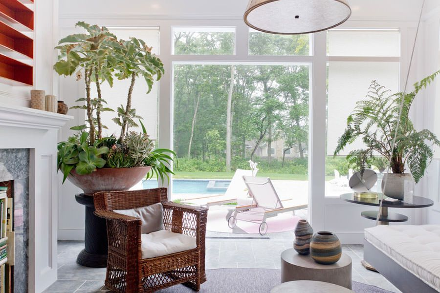 Arredamento Piante ~ Come arredamento il salotto con le piante n arredare living