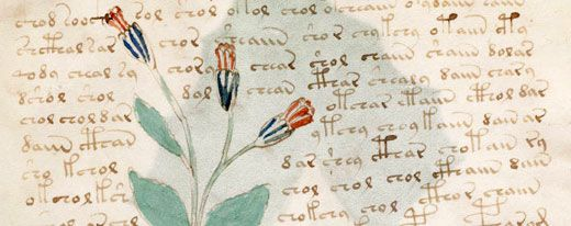 Salaperäisen 500 vuotta vanhan Voynichin käsikirjoituksen alkuperä selvisi - Tekniikka&Talous