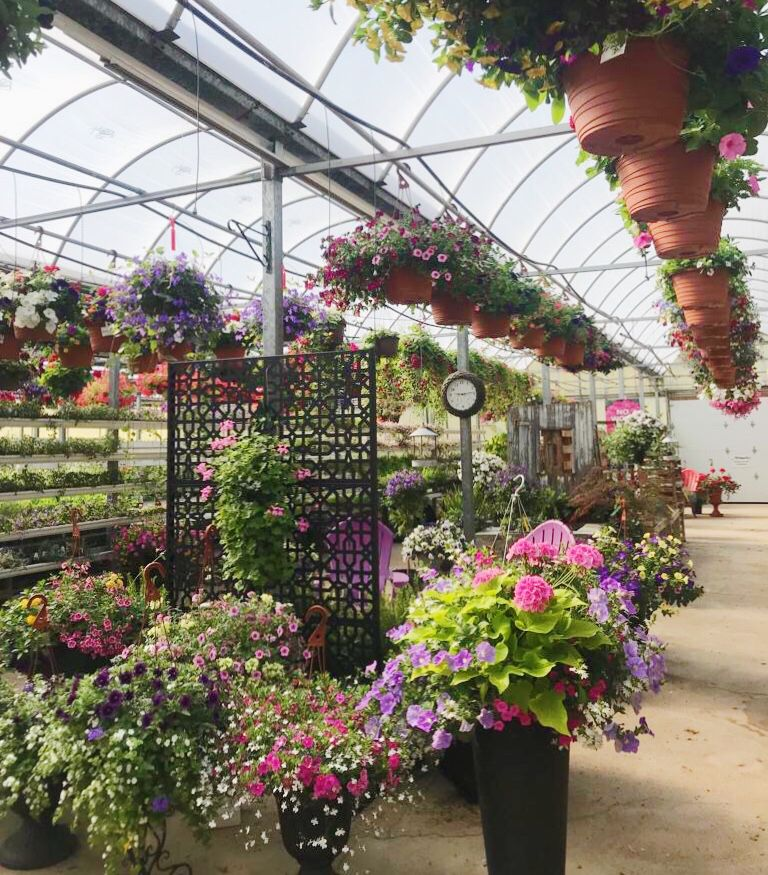 Riverside Greenhouses is a family owned, full service