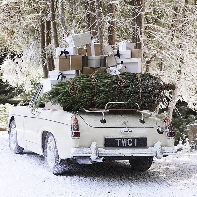 Making our way to Christmas time like... 🎄 Photo: @thewhitecompany