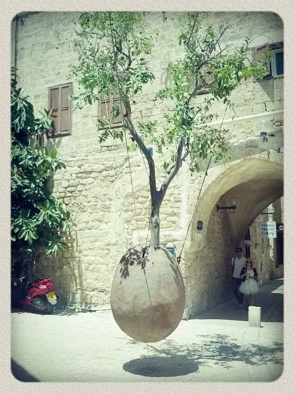 26++ Natural burial tree pod ideas