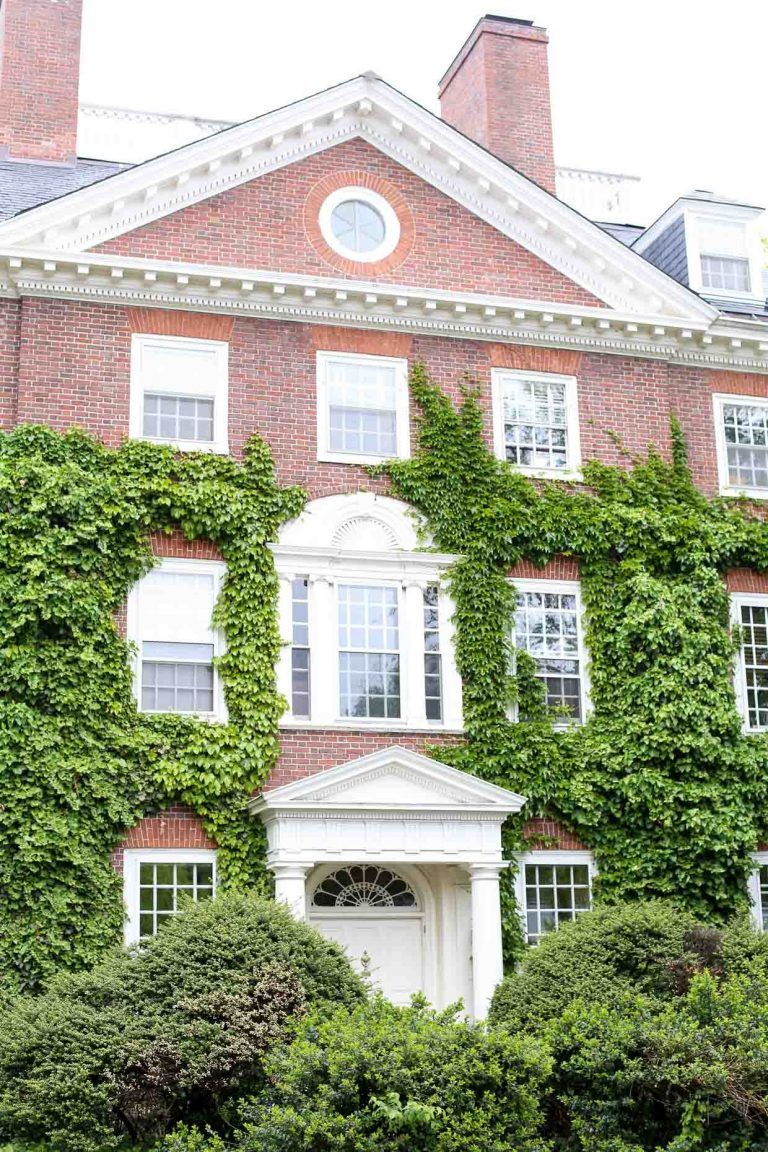 15 Best Things To Do In Boston A Travel Recap Boston Travel