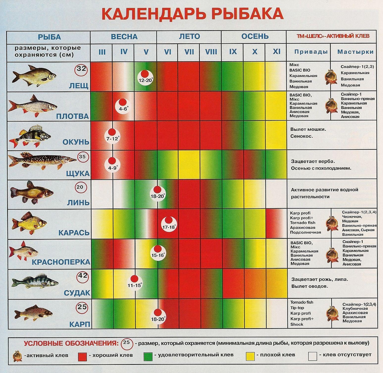 прогноз клева рыбы 2020